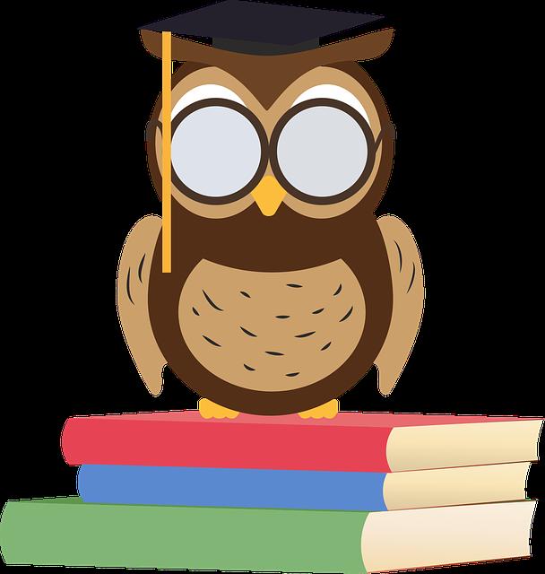 owl-2790684_640